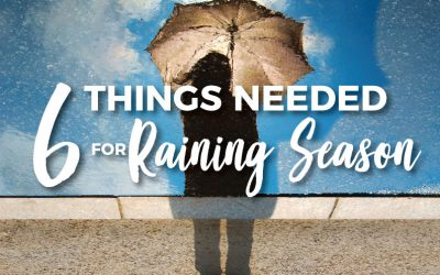 6 Things Needed for Raining Season